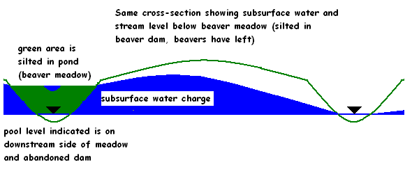 Figure showing groundwater elevated by silted in pond.